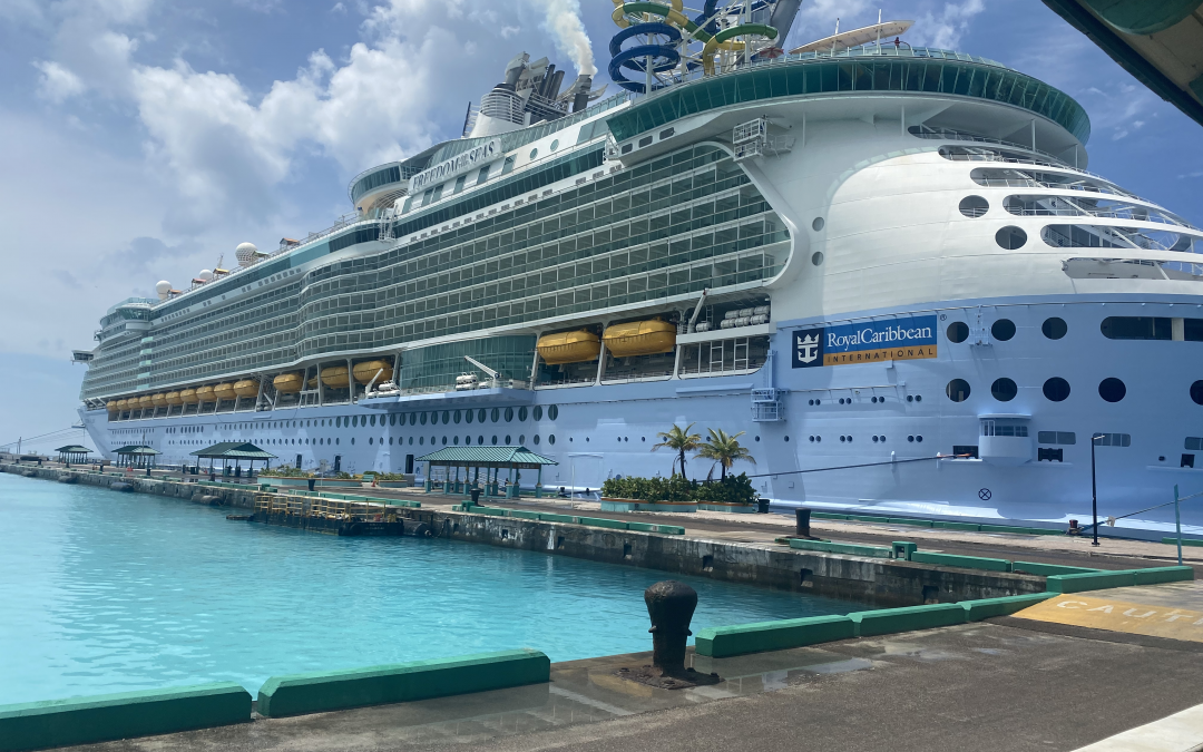 What it's like to be on a cruise ship right now